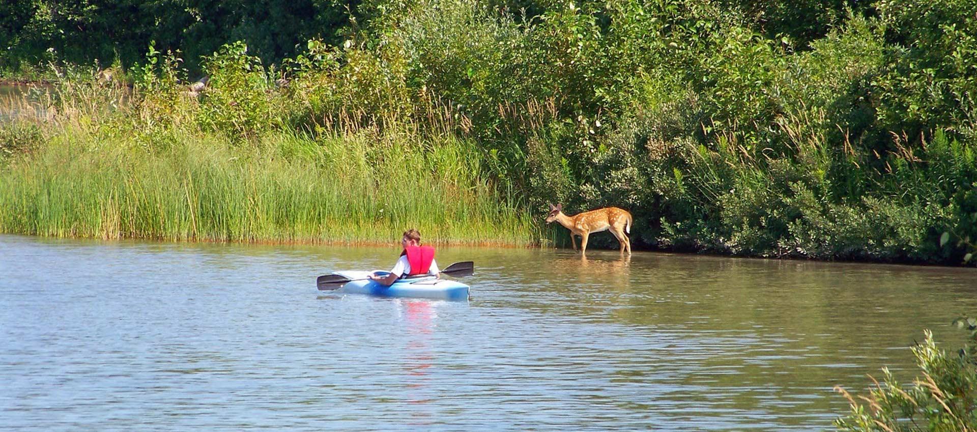 paddling-header