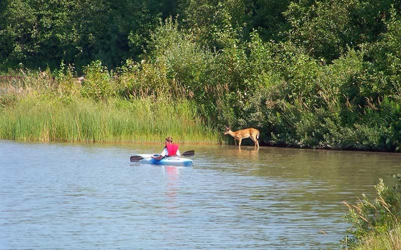 paddling-img