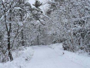 winter-island-road
